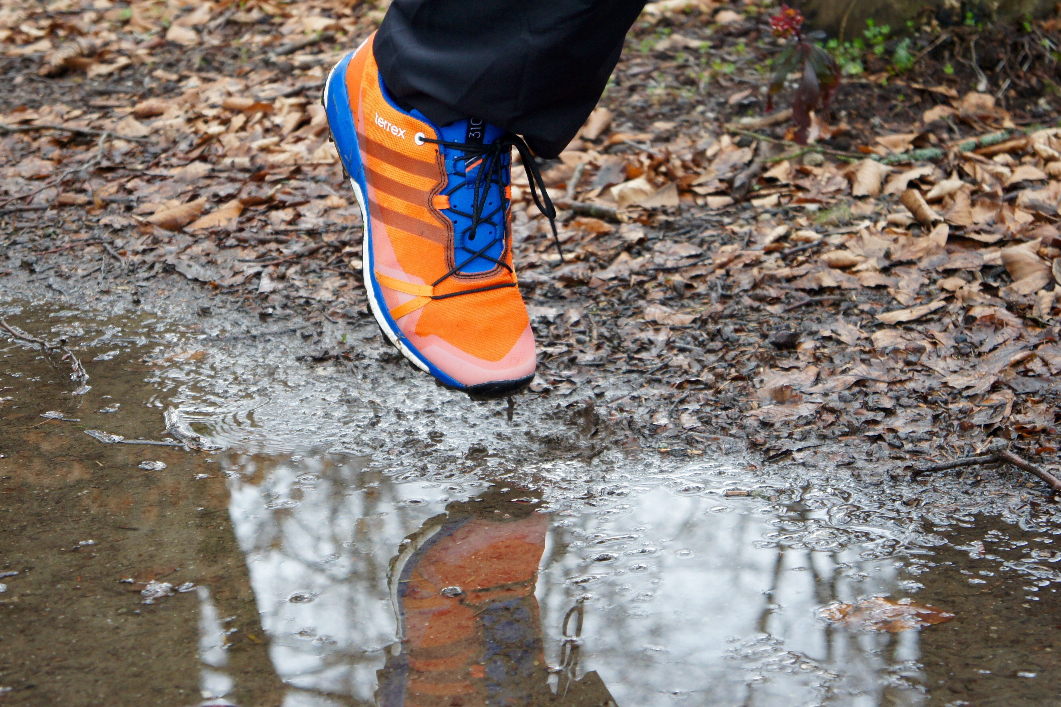 TestAdidas Terrex Terrex Agravic SchuhBergwelten Agravic Trailrunning SchuhBergwelten Trailrunning TestAdidas bgY6vfy7
